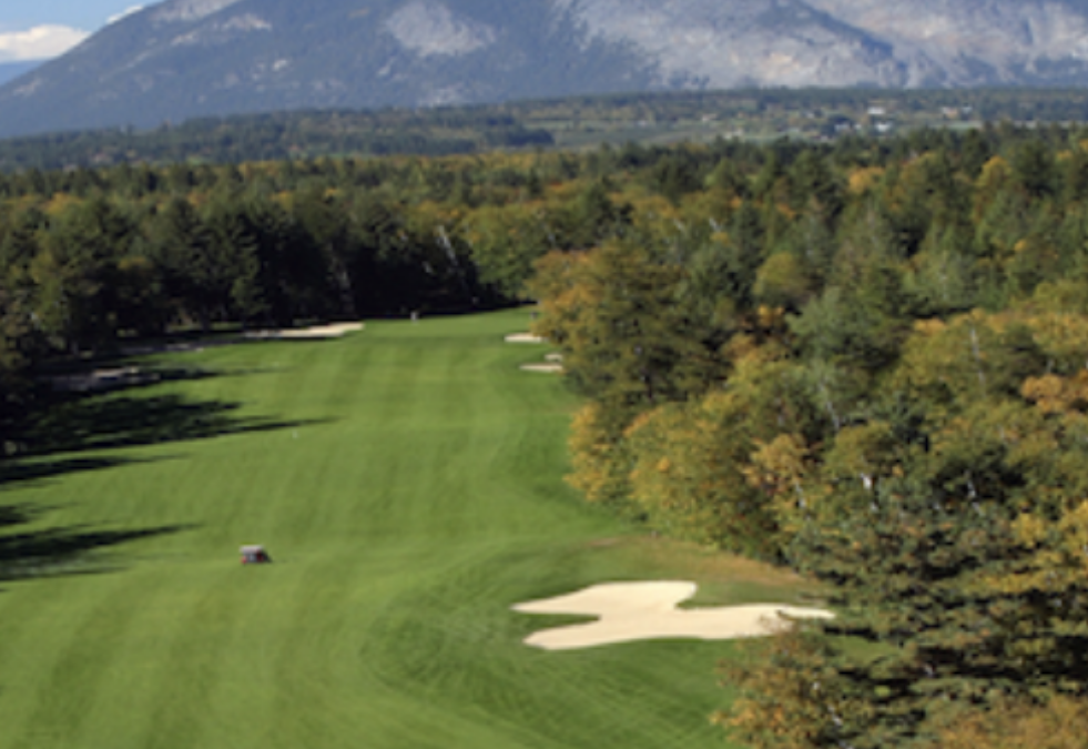 Shuswap Golf Courses